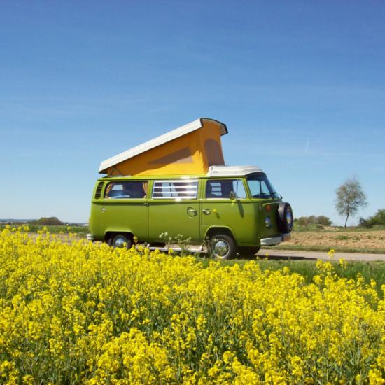 Groene Volkswagen T2 camper tussen de bloemen
